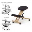 Silla ergonómica de escritorio